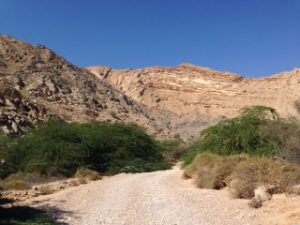 Durch Wadis gehen meistens Schotterpisten, die oftmals wenig befahren sind und einem eine grandiose Landschaft bieten. Das Hindurchfahren lohnt sich bei trockenem Wetter immer.