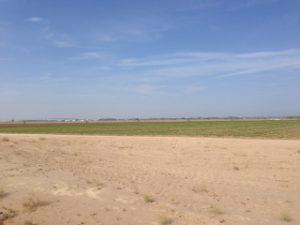 Wo im Winter schon in der Sonne 37 Grad und mehr erreicht werden, muss man das Bewässern von Rundfeldern in einem Wüstenstaat schon kritisch betrachten.